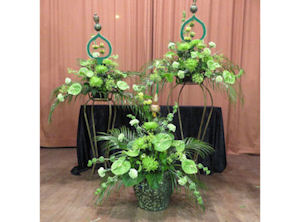 Our life in Flowers - plant displays